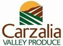 Carzalia logo