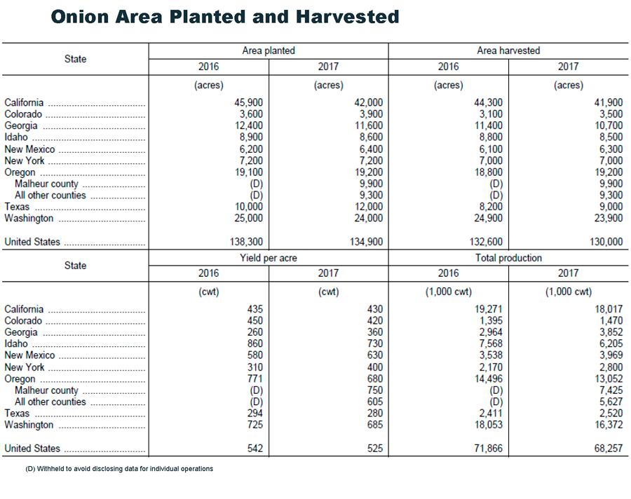 USDA-Onions-Planted