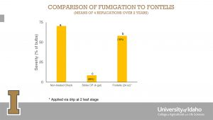 Figure 1: A comparison of fumigation to Fontelis applied via drip at two-leaf stage.
